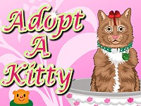 Adopt a Kitty
